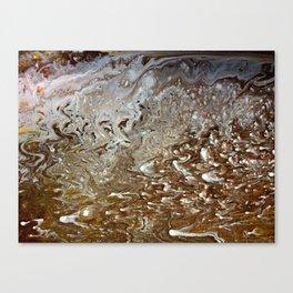 Mud Puddle Canvas Print