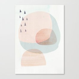 03 a3 society6 peach higher res Canvas Print