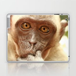 MALAYSIAN MONKEY Laptop & iPad Skin