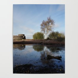 Cold Clear Morning At Chasewater Poster