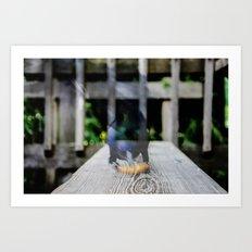 multi bird Art Print