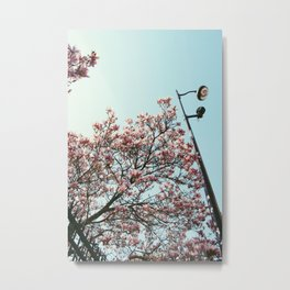 Spring in Paris Metal Print