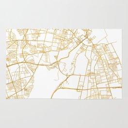 COPENHAGEN DENMARK CITY STREET MAP ART Rug