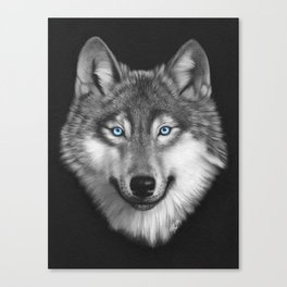 Wolf with blue eyes Canvas Print