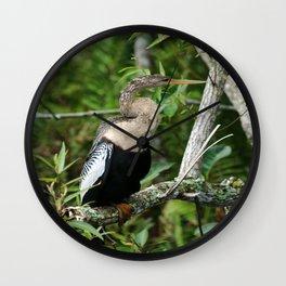 Anhinga Wall Clock