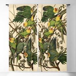 Carolina Parrot Blackout Curtain