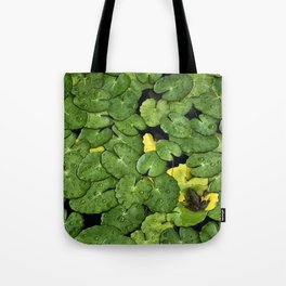 Frog on the Lily Pads Tote Bag