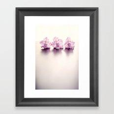 Three Pink Flowers Framed Art Print