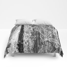 Carvings in Tree Trunk Gnarly Texture Pattern Comforters