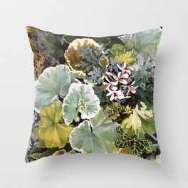 Geraniums Galore Throw Pillow