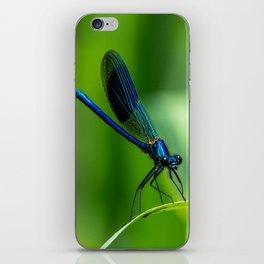 Damselfly. iPhone Skin