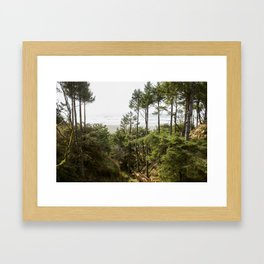 Stairs to the Sea Framed Art Print
