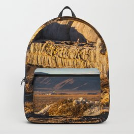 Sitting comfortably Backpack