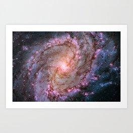Spiral Galaxy M83 Art Print