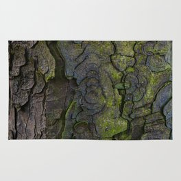 European horse-chestnut I Rug