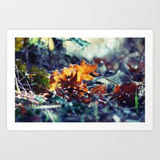 Blue Autumn Art Print