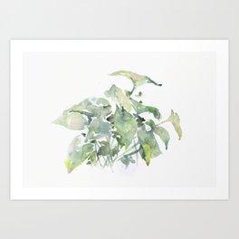 foglie I Art Print