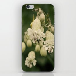 primavera iPhone Skin