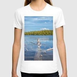 Smoke Lake T-shirt