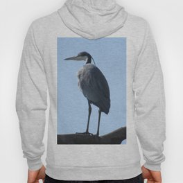 Great Blue Heron with a bird's eye view Hoody