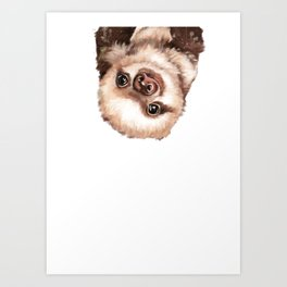 Baby Sloth Art Print