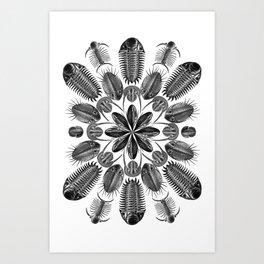 Trilobite and Fossil Mandala, Collage using Ernst Haeckel illustrations Art Print