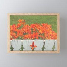 White Picket Fence / Daylilies / Flowers Framed Mini Art Print