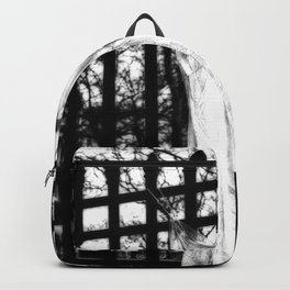 Memories Of A Ghost Backpack