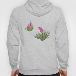 Air Plants yellow Background Hoody