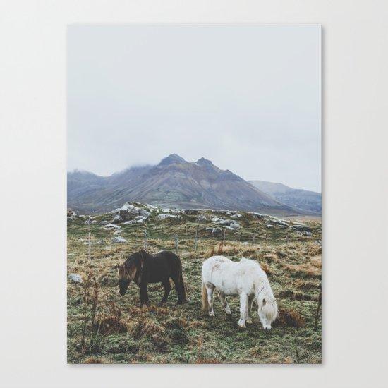 Iceland X Canvas Print