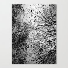 Branches & Leaves Canvas Print