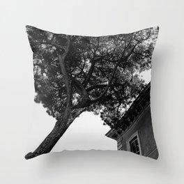 Italian Stone Pine Tree IV Throw Pillow