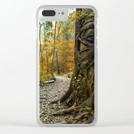 Bunya treasure Clear iPhone Case