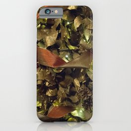 Longwood Gardens Christmas Series 75 iPhone Case