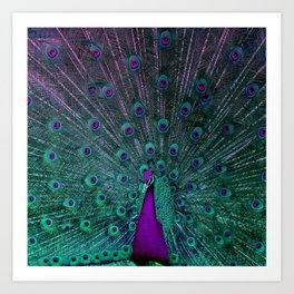 BLOOMING PEACOCK Art Print