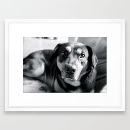 """puppy love"" Framed Art Print"