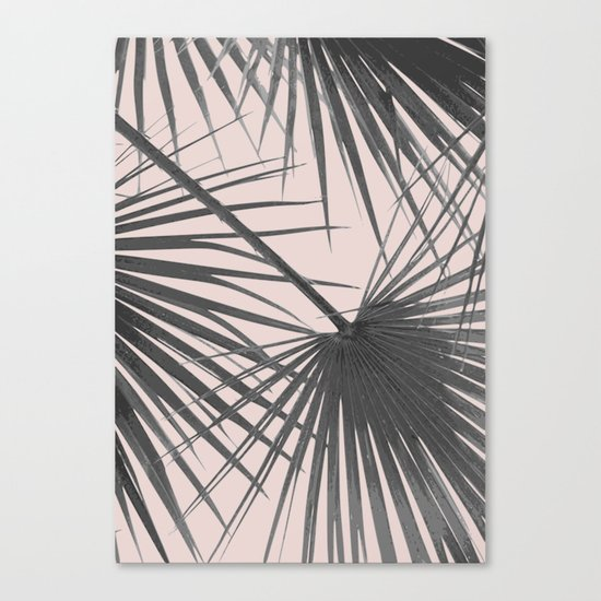 Palm web Canvas Print