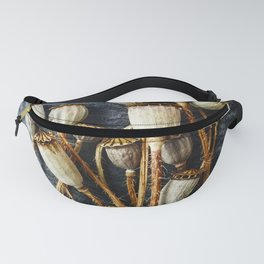 Pods Fanny Pack