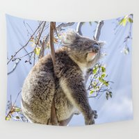 koala Wall Tapestries featuring Koala by Imagevixen