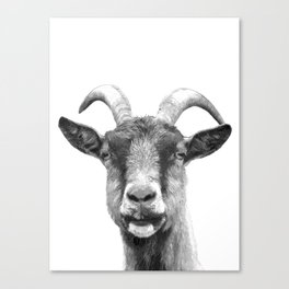 Black and White Goat Canvas Print