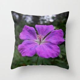 Violet Viola Flower With Garden Background  Throw Pillow