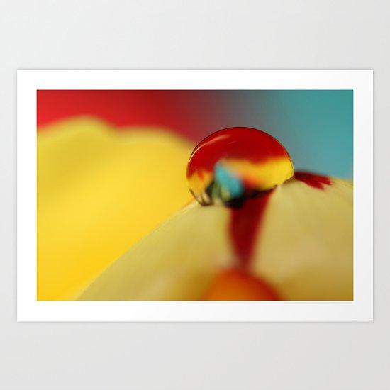 Tulip Drop Against Blue Art Print