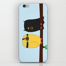 The Dark Knight Rises iPhone & iPod Skin