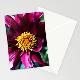 Organized But Messy Stationery Cards