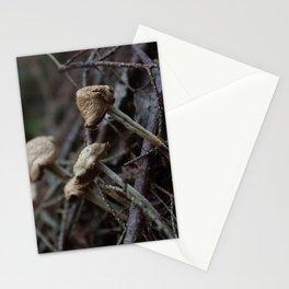 Mushroom II Stationery Cards