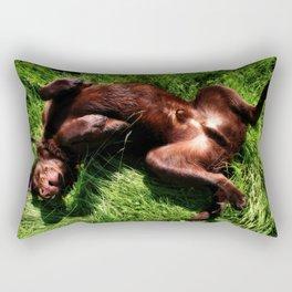 Charlie Bear Rectangular Pillow