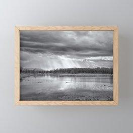 Birdland BW Framed Mini Art Print