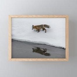 Carol M. Highsmith - Hunting Fox Framed Mini Art Print