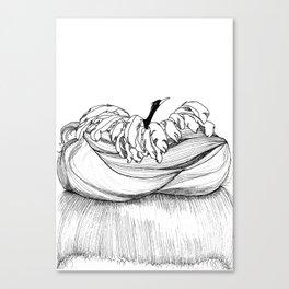 hair knots Canvas Print