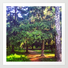 Morning walk Art Print